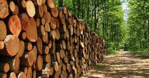 Mid Carolina Timber Company