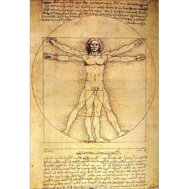 R1m : Vinci.
