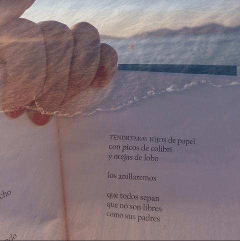 Versos con conexión atlántica. Detrás de esos ojos risueños, también la gravedad. Leer hasta que la noche se hizo playa