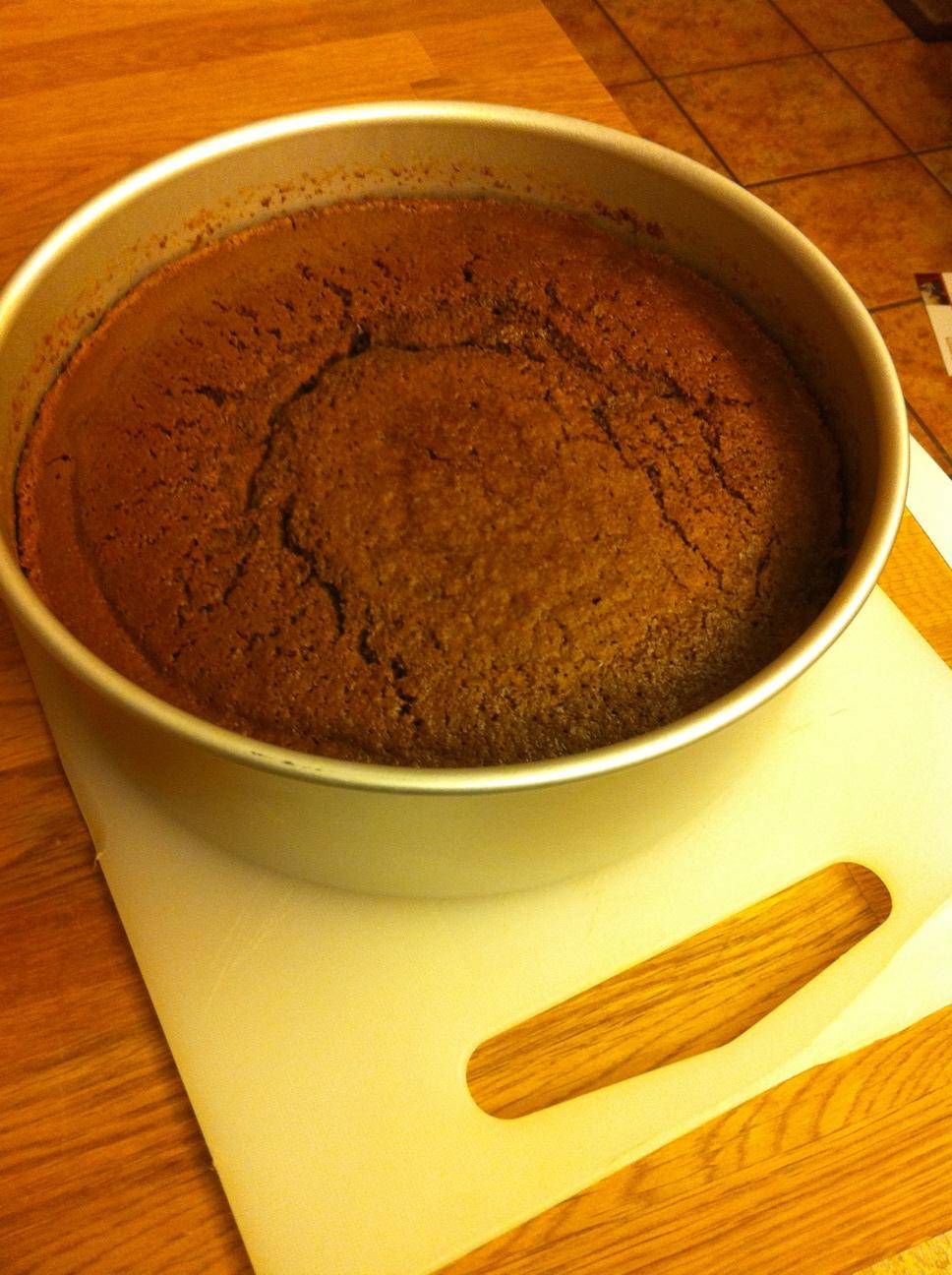 Simple Chocolate Sponge Cake Bigoven 185334