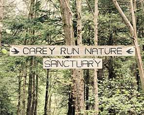 Carey Run Sanctuary - Maryland Ornithological Society