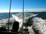Cruising for crab pots on Chincoteague Bay