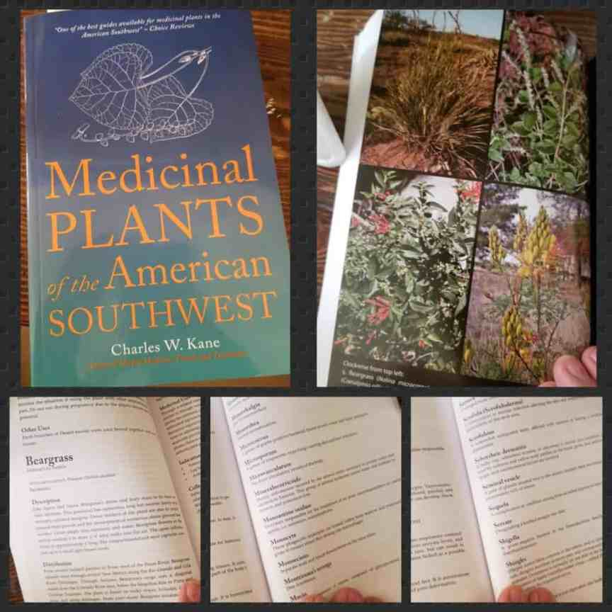 Medicinal Plants of the American Southwest (Herbal Medicine of the American Southwest)