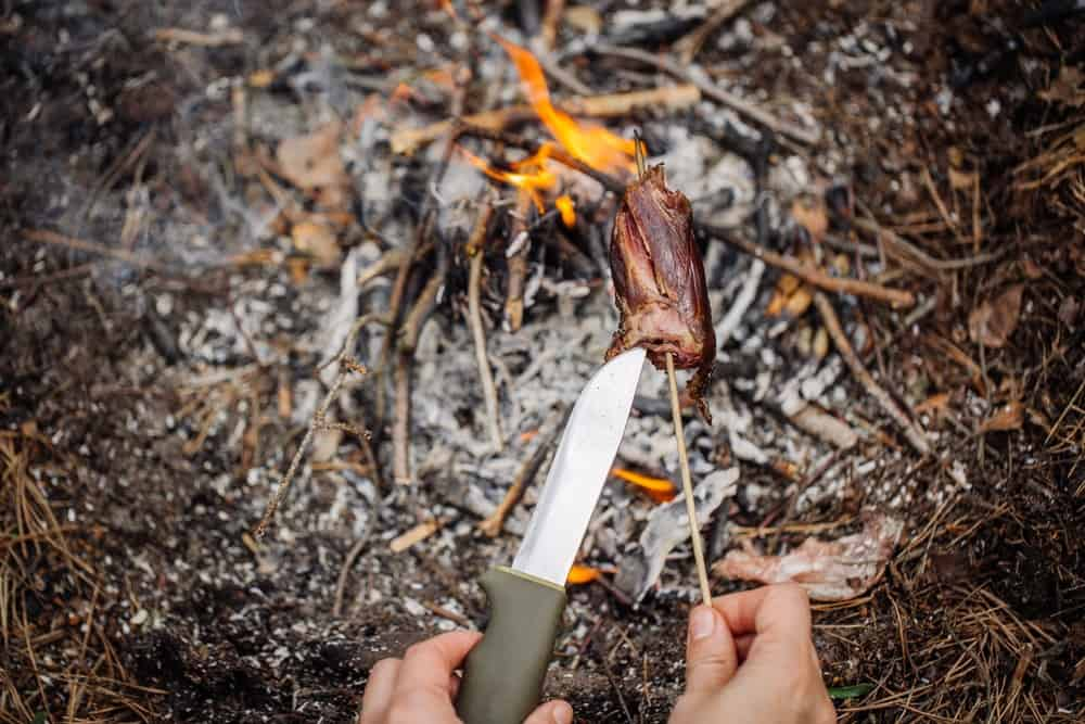 Bushcraft and survival skills to learn now