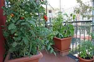 garden city preppers