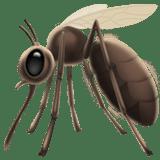 mosquito bug