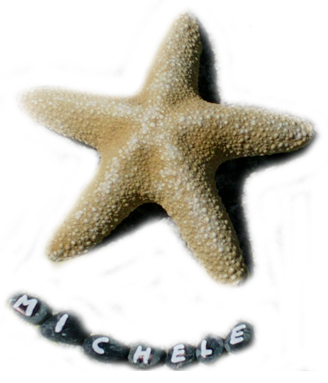 stella di michele 3_1