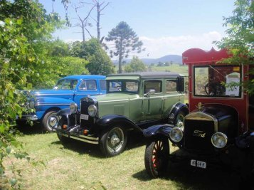 Vintage cars at Bodalla
