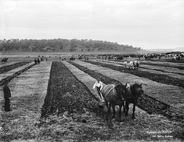 Ploughing Matches were regular events in rural Australia at this time in our history