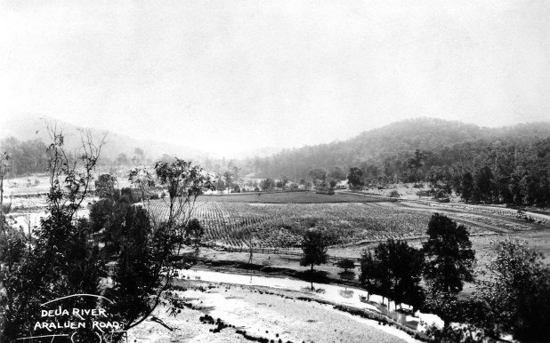Farms along the Araluen Road