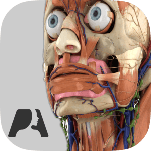 Pocket Anatomy (2018) image not available