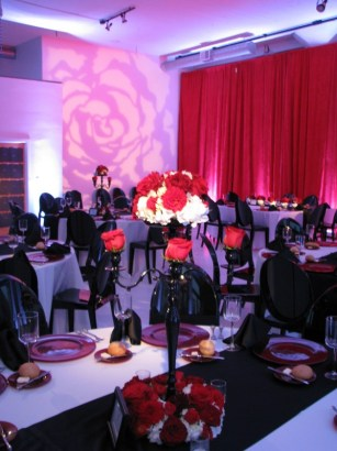 Gobo projection and pin spots