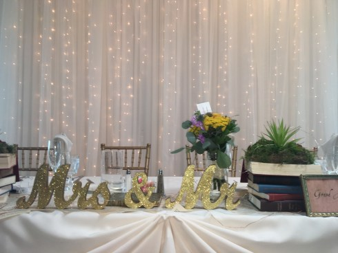 Twinkle Drape for a Wedding