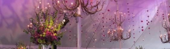 Lighting for Chicago Tent Weddings