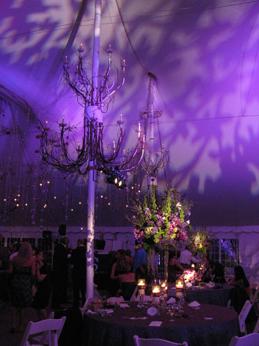 Purple Lighting and Pin Spots at Galleria Marchetti