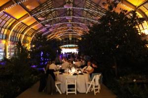 Chicago Wedding Lighting