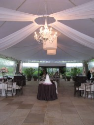 Chandelier at Chicago Botanic Gardens Wedding