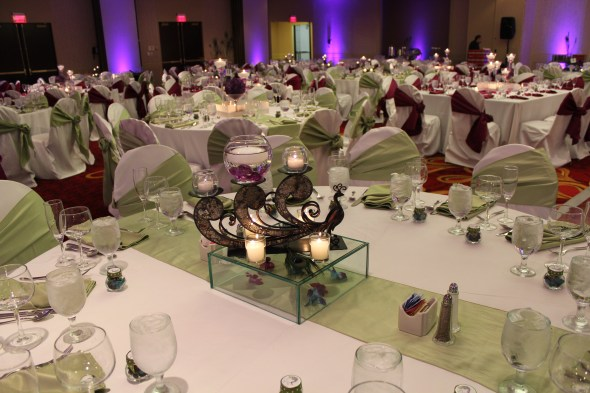 Peacock centerpieces at the Marriott Schaumburg Wedding
