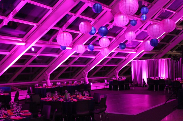 Fuchsia and Purple Lanterns at Adler