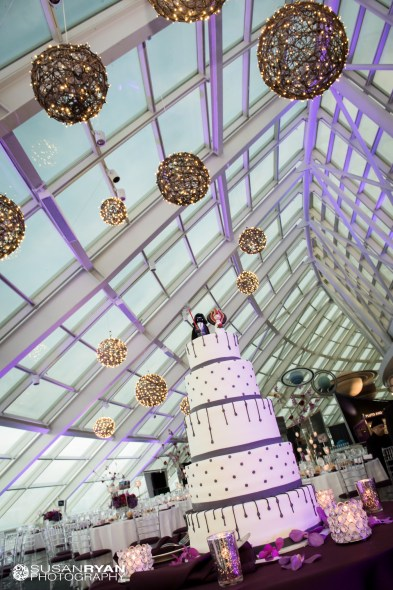 Adler Planetarium Wedding Cake 2