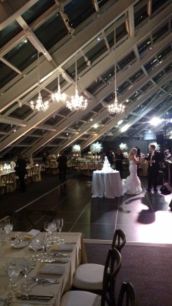 Chandeliers for an Adler Wedding