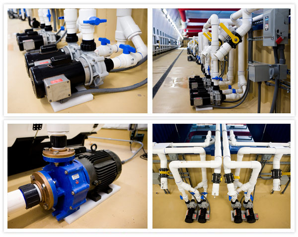 MDM Pumps Oceans Design aquaculture installation