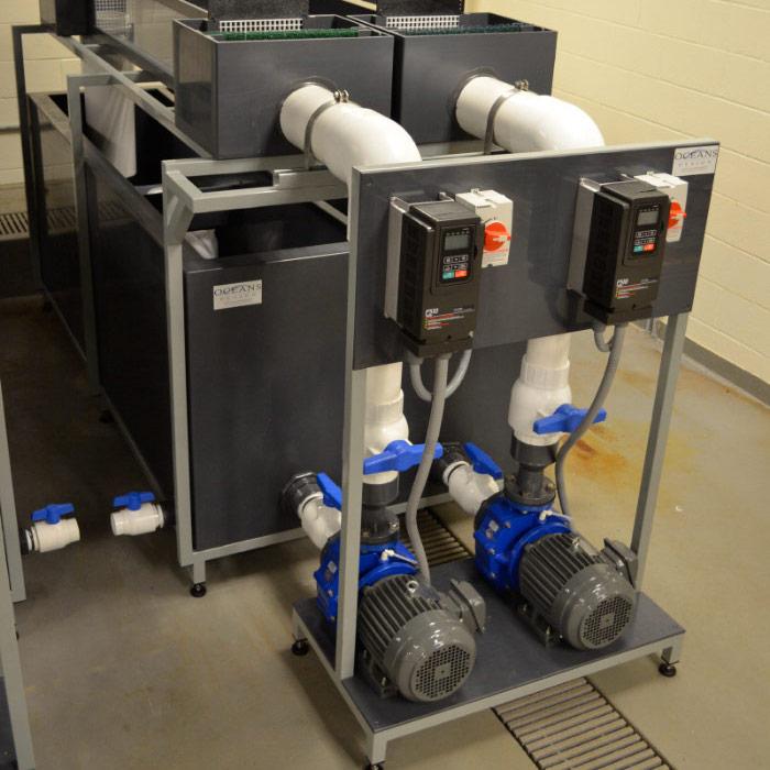 MDM Pumps Oceans Design installation