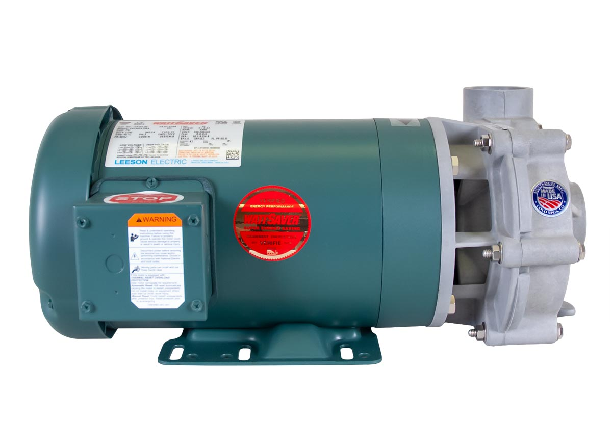Advance 1000 Pump with green Leeson Motor left side view