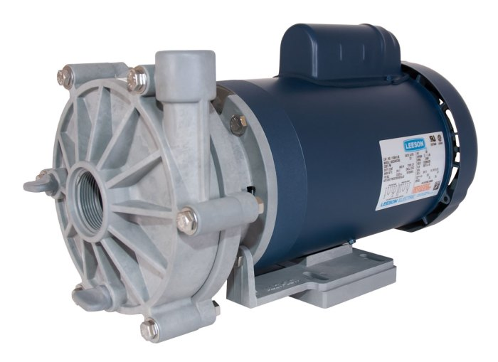Advance 3000 Pump with blue Leeson Motor right angle view