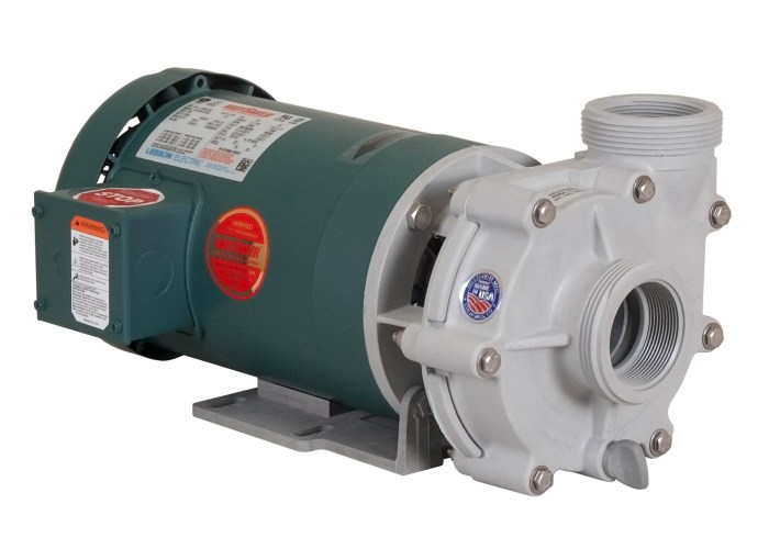 Advance 4000 Pump with green Leeson Motor left angle view