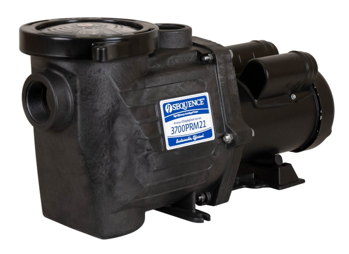 Sequence Primer Champion Pump with black Leeson Motor right angle view