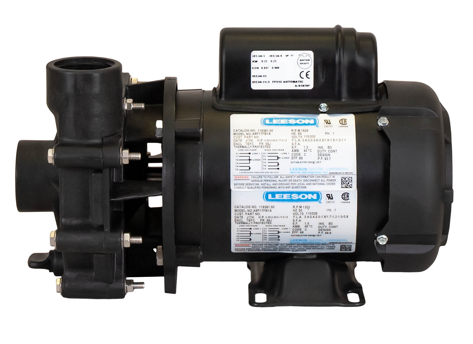 ValuFlo 1000 Pump with Leeson Motor right side view