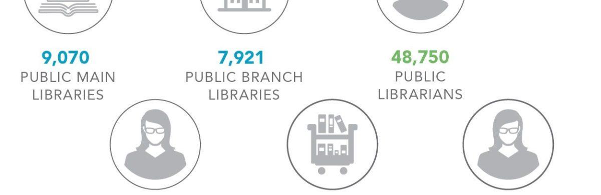 Library Data Highlights