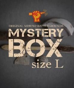 Mystery-Box-L