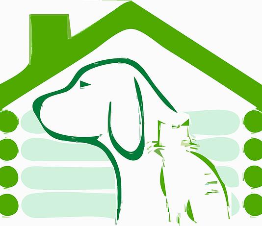 Για τους ψύλλους στο σπιτάκι του σκύλου