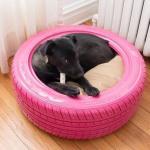 Μια ρόδα έγινε κρεβάτι για το σκύλο