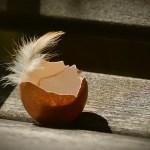 Τα χρήσιμα τσόφλια από τα αβγά