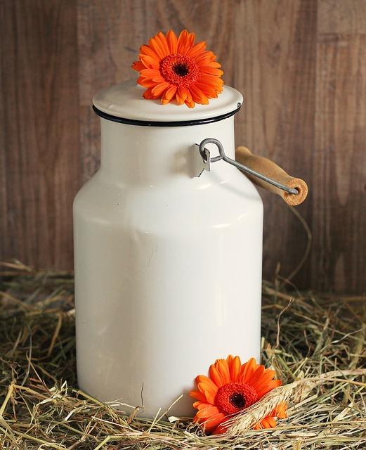 Πως θα καθαρίσεις τον λεκέ από γάλα