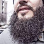 beard-698509_640 (1)