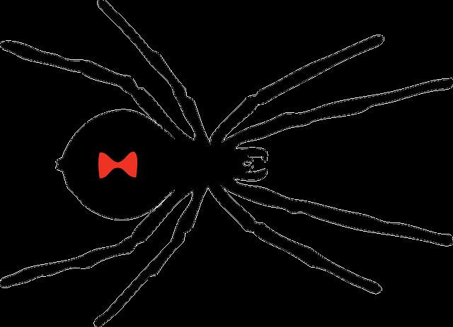 αράχνη άνθρωπος μαύρη γάτα σεξ καυτά μαύρο μουνί μελαχροινή