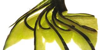 Γαρνιρίσματα - Γιρλάντες από αγγούρι