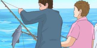 Ανέκδοτο - 2 φίλοι ψάρευαν