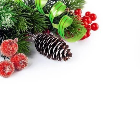 Τι το κάνουμε το δέντρο μετά τις γιορτές;