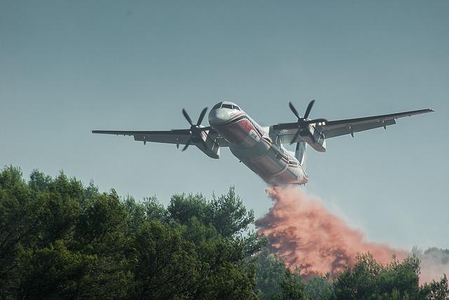 Τι κάνεις αν πιάσει φωτιά στο δάσος;