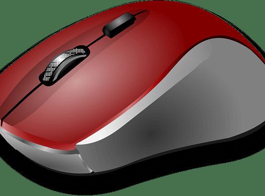 Το ποντίκι και πως το καθαρίζουμε