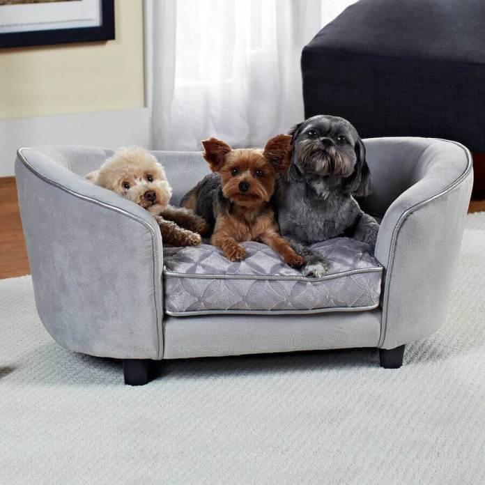Το Σούπερ Κόλπο για να καθαρίσετε τις τρίχες του ζώου στον καναπέ