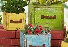 21 ιδέες και προτάσεις για τα φυτά μέσα και έξω από το σπίτι