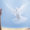 Jesus-Holy-Spirit-2312