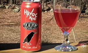 rating review havoc mead psychopomp sour cherry