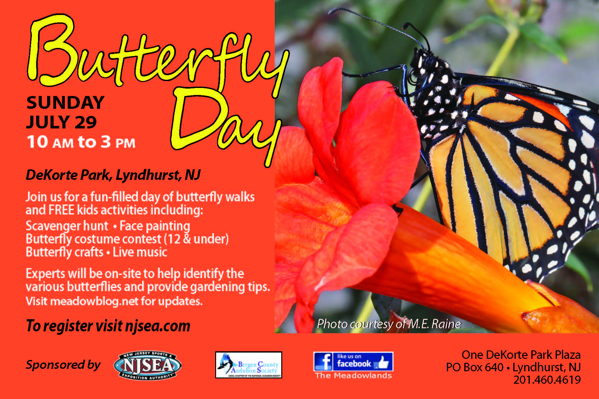 Image result for 9th Annual Butterfly Day at DeKorte Park